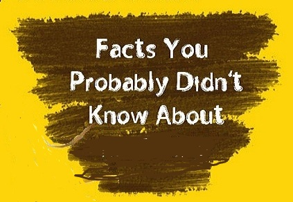 Unknown Facts You Should Not Miss About joggers